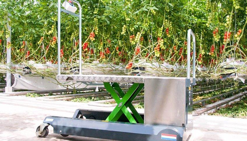 Berkvens Greencart bladplukwagen | Steenks Service