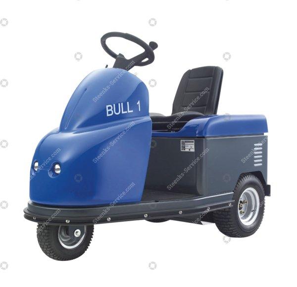 Bull 1